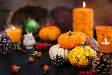 Autumnal colorful  pumpkins  on candle and fallen leaves background
