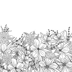 Hand drawn floral decorative element. Black and white vector border.