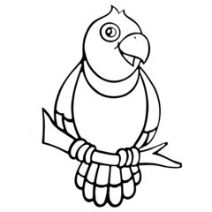 Parrot cartoon illustration isolated on white background for children color book