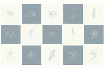 Set of floral design elements: plants, branches, leaves.