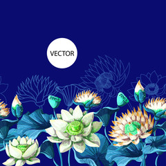 Border with waterlily hand draw. Vector illustration.