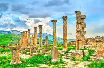 Foto op Aluminium Algerije Berbero-Roman ruins at Djemila in Algeria