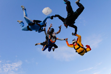 Group of skydivers is in the sky. Friends are falling with tandem-passenger girl.