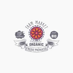 Grapefruit word on background illustration. Fruit web element, Isolated Vector