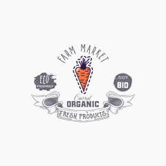 Hand drawn carrot word on background illustration. Fruit web element, Isolated Vector.