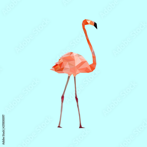 Low poly colorful Flamingo bird on blue back ground,animal
