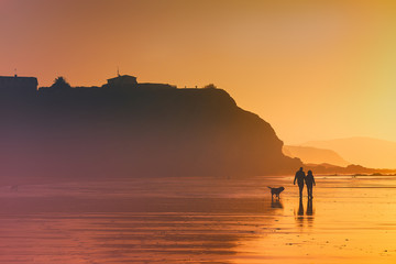 couple walking the dog on beach