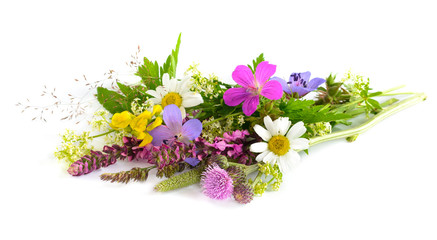 Bouquet of wild flowers on white background