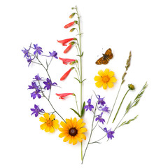 Composition of plants and flowers on a white background. Meadow.