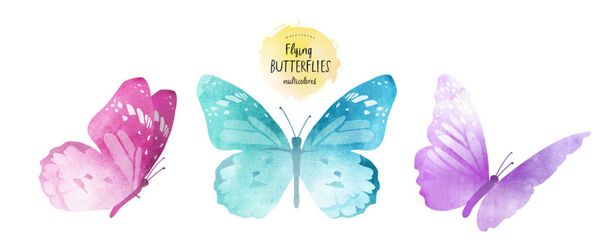 watercolor illustrations of cute multi-colored butterflies, drawings by hand, isolated on white background