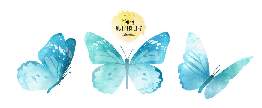 watercolor illustrations of cute blue butterflies, drawings by hand, isolated on white background