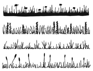 grass and plants vector. lawn isolated