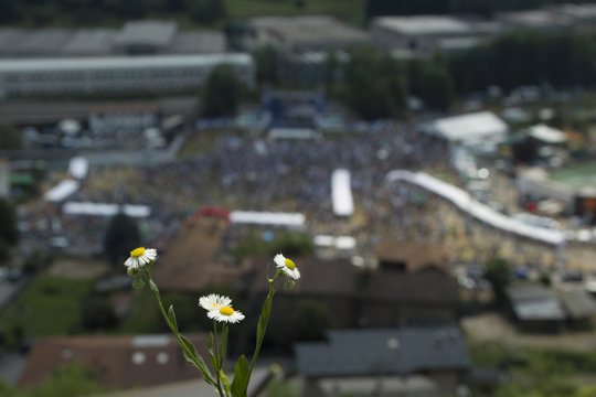 Blurry view of Pontida 2018 behind a daisy in focus