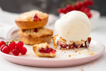 Ice-cream and biscuits with red currant on white background.