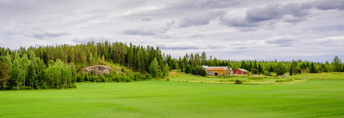 Rural Finland. Wooden cottage on the background of a beautiful green field and forest, beautiful summer landscape.