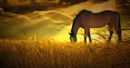 Horse. Sunset