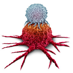 T Cell Attacking Cancer Tumor