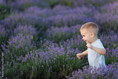 0169f710e Playful little cute child baby boy walk on purple lavender flower meadow  field background, run, have fun, play, enjoy. Excited small kid son.