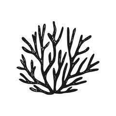 seaweed. simple vector sketch isolated black silhouette