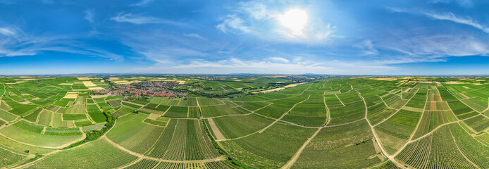 360° VR Luftbildpanorama der Weinberge vor Westhofen in der Rheinpfalz