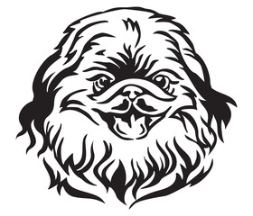Decorative portrait of Dog Pekingese vector illustration