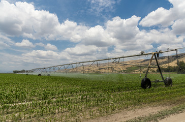 Lateral move irrigation system