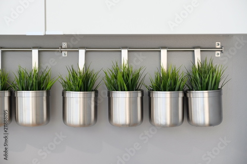 fresh green grass in metal pots. decorative landscaping. artificial