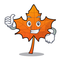Thumbs up red maple leaf character cartoon
