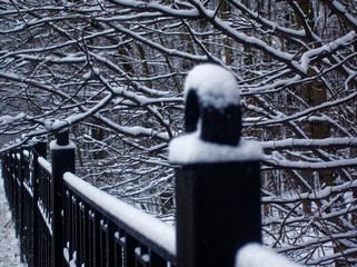 snow on the iron fence in the Park