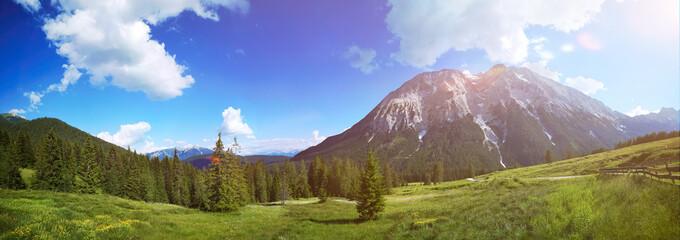 Panorama in Österreich Landschaft mit blühender Wiese und blauem Himmel