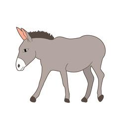 vector, isolated donkey gray goes