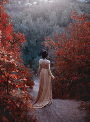 The princess in a yellow vintage dress in the Renaissance is walking along the picturesque autumn hills at dusk. Photo of a brunette girl with a back without a face. Artistic Photography.
