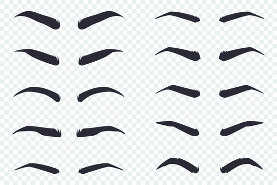 Male and female eyebrows of different shapes. Vector cartoon flat icons set isolated on transparent background.
