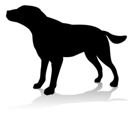 Dog Pet Animal Silhouette