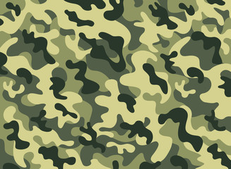 Camouflage patter