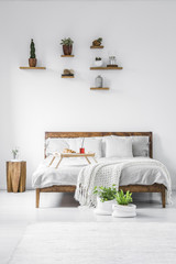 Plants and decor placed on shelves above wooden double bed with white bedding, breakfast tray with juice and croissant and knit coverlet in white room interior