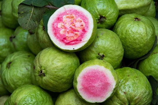 guava use design