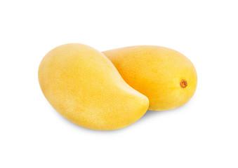 King of fruits,  yellow Mango fruit duo isolated on white background