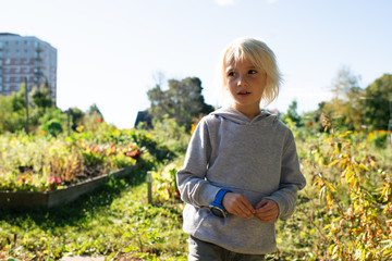 Boy in allotment on sunny day