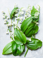 Lily of the valley cut flowers and leaves, overhead view