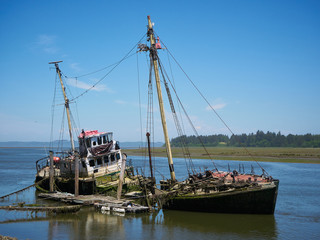 Sunken ship on Willapa Bay, Bay Center, Washington