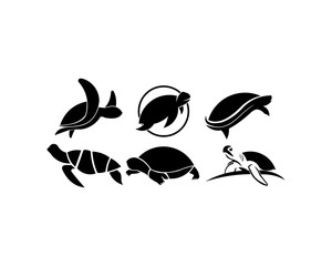 animal Turtle icon vector, filled flat sign, solid pictogram isolated on white. Symbol, logo illustration