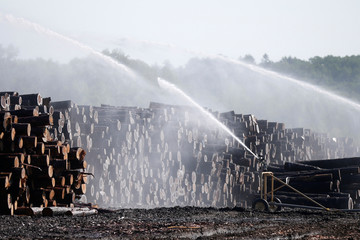 Water is sprayed on logs at the Murray Brothers Lumber Company in Madawaska