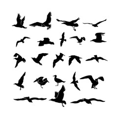 Set of sea gull, seabird flying black silhouette. Freehand drawing. Drawing free flight group icon. Freedom print art. Vector illustration marine birds flock. Isolated on white background