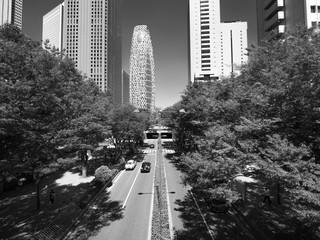 Fototapete - 新宿高層ビル街