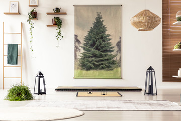 Lanterns and rugs on the floor in bright interior in japanese design with poster and plants. Real photo