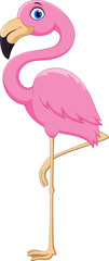 Cartoon pink flamingo bird