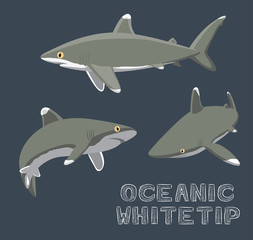 Oceanic Whitetip Cartoon Vector Illustration
