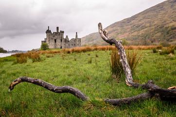 Scottish castle throw the branch. Scotland, Great Britain. Medieval