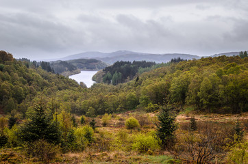 Forest and lake. Scottish landscape. Scotland, Great Britain